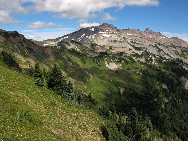 Old Snowy, Ives Peak, & Goat Creek Valley [Lily Basin Trail, Goat Rocks Wilderness, Washington]