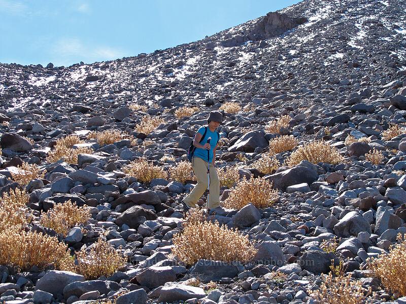 descending from Langille Crags [Langille Glacier, Mt. Hood Wilderness, Oregon]