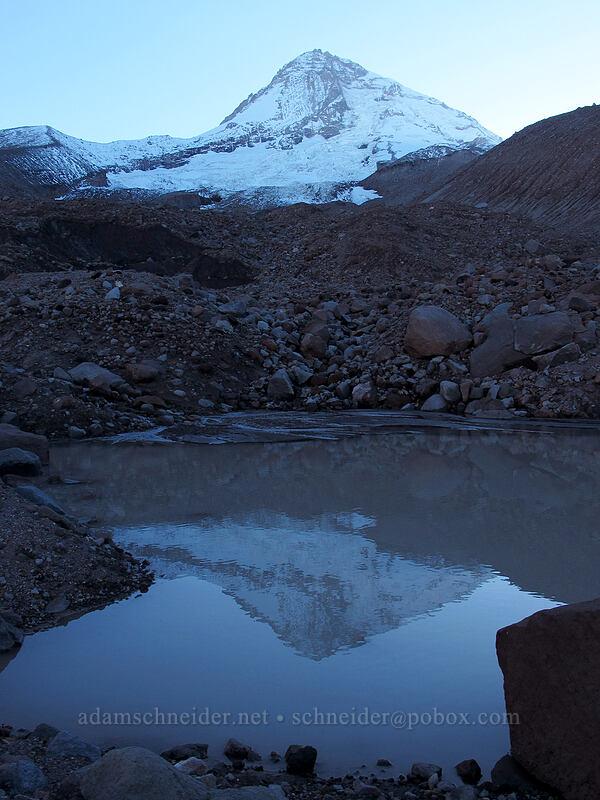 Mount Hood, reflected [Timberline Trail, Mt. Hood Wilderness, Oregon]