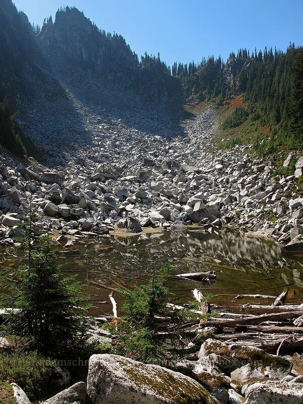 pond below Surprise Mountain [Pacific Crest Trail, Alpine Lakes Wilderness, Washington]