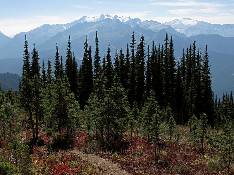 Mt. Daniel & Mt. Hinman [Surprise Mountain Trail, Alpine Lakes Wilderness, Washington]