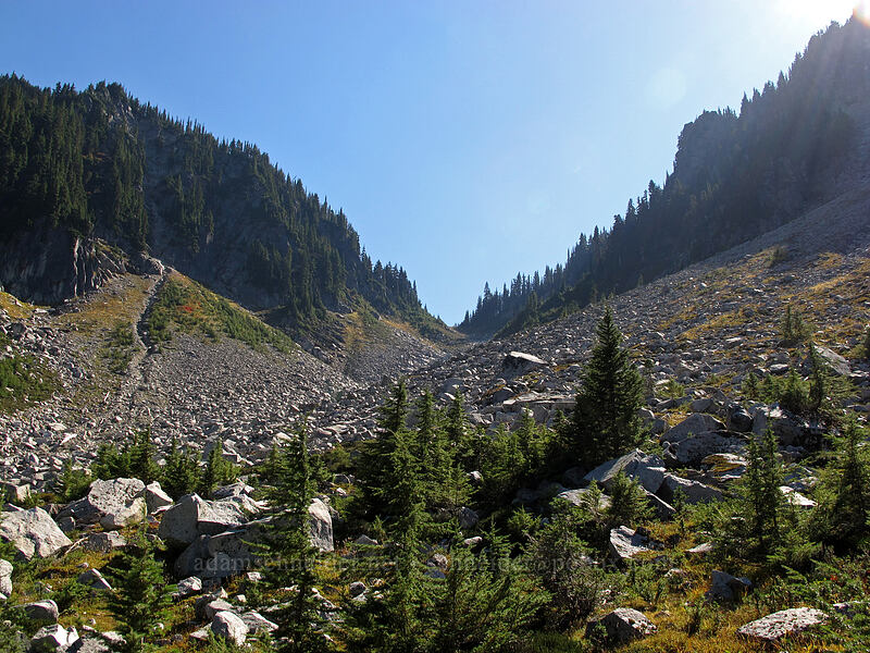 Surprise Gap [Old Cascade Crest Trail, Alpine Lakes Wilderness, Washington]