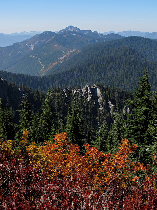 fall colors & the southwest view [Mt. McCausland, Henry M. Jackson Wilderness, Washington]