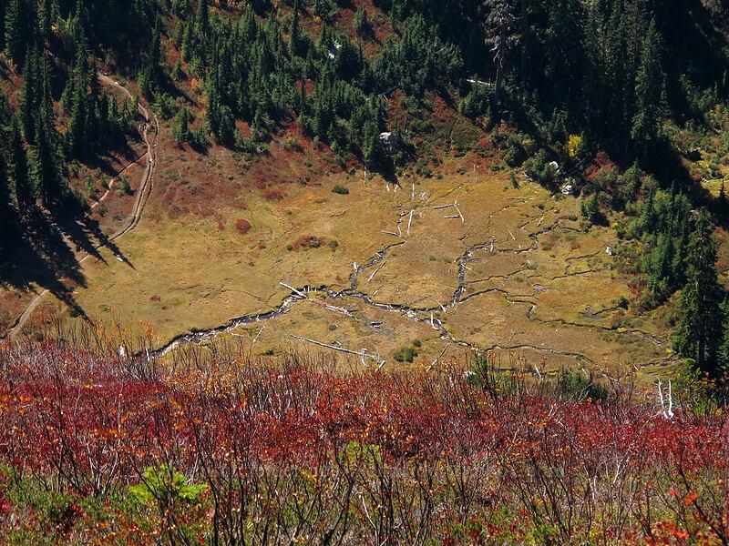 basin above Lake Valhalla [Mt. McCausland, Henry M. Jackson Wilderness, Washington]