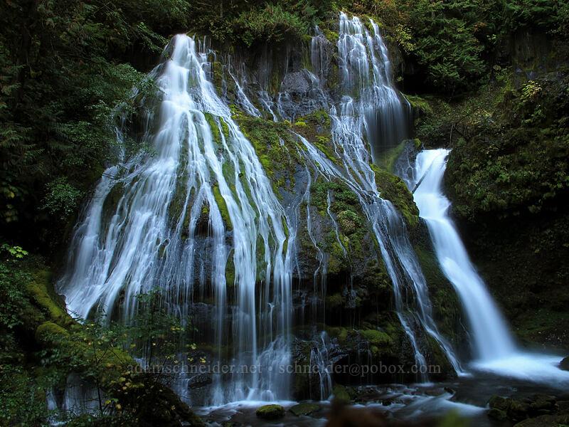 Panther Creek Falls [Panther Creek Falls, Gifford Pinchot National Forest, Washington]