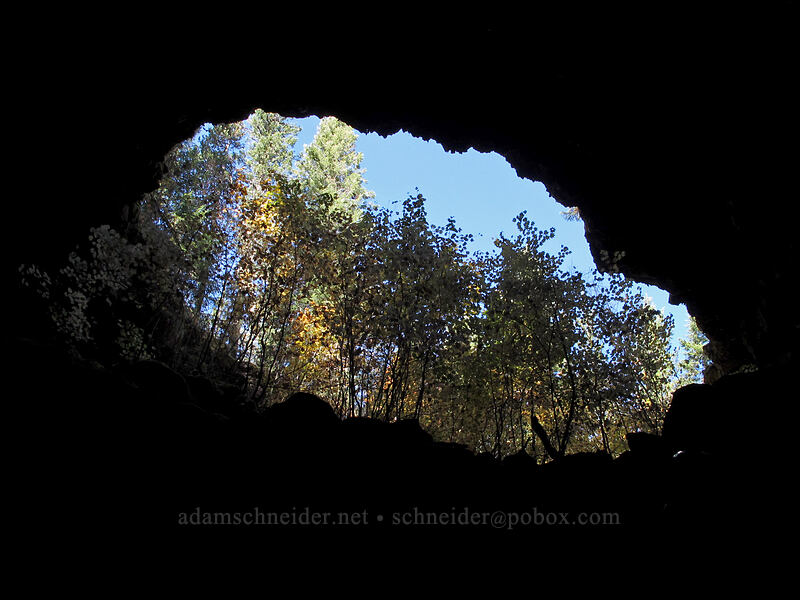 cave entrance from below [Falls Creek Cave, Gifford Pinchot National Forest, Washington]