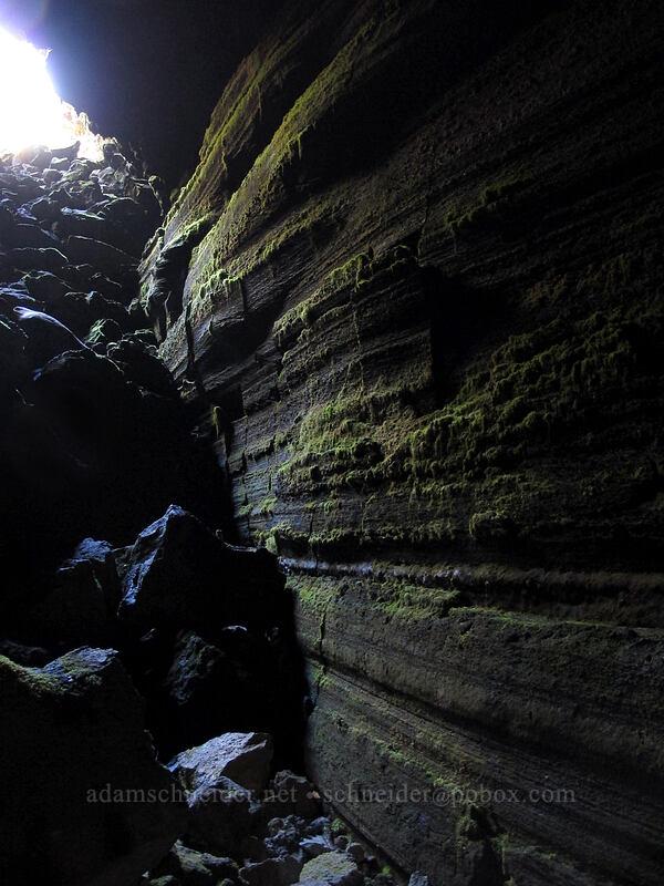 cave entrance & wall [Falls Creek Cave, Gifford Pinchot National Forest, Washington]