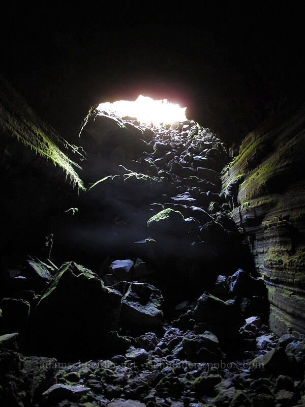 fog in the cave entrance [Falls Creek Cave, Gifford Pinchot National Forest, Washington]