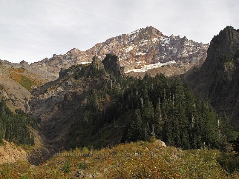 Mount Hood [Pacific Crest Trail, Mt. Hood Wilderness, Oregon]