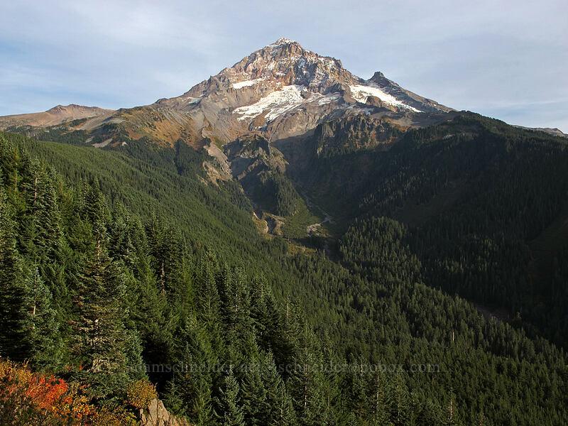 Mount Hood [Bald Mountain, Mt. Hood Wilderness, Oregon]