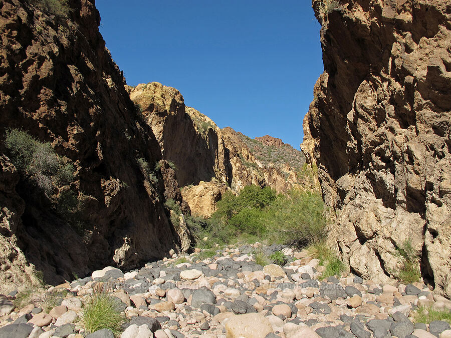 rocky canyon [Lower Boulder Canyon, Superstition Wilderness, Arizona]
