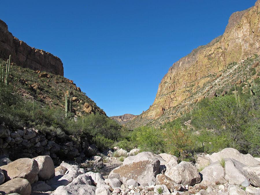 Battleship Mountain & Geronimo Head [La Barge Canyon, Superstition Wilderness, Arizona]
