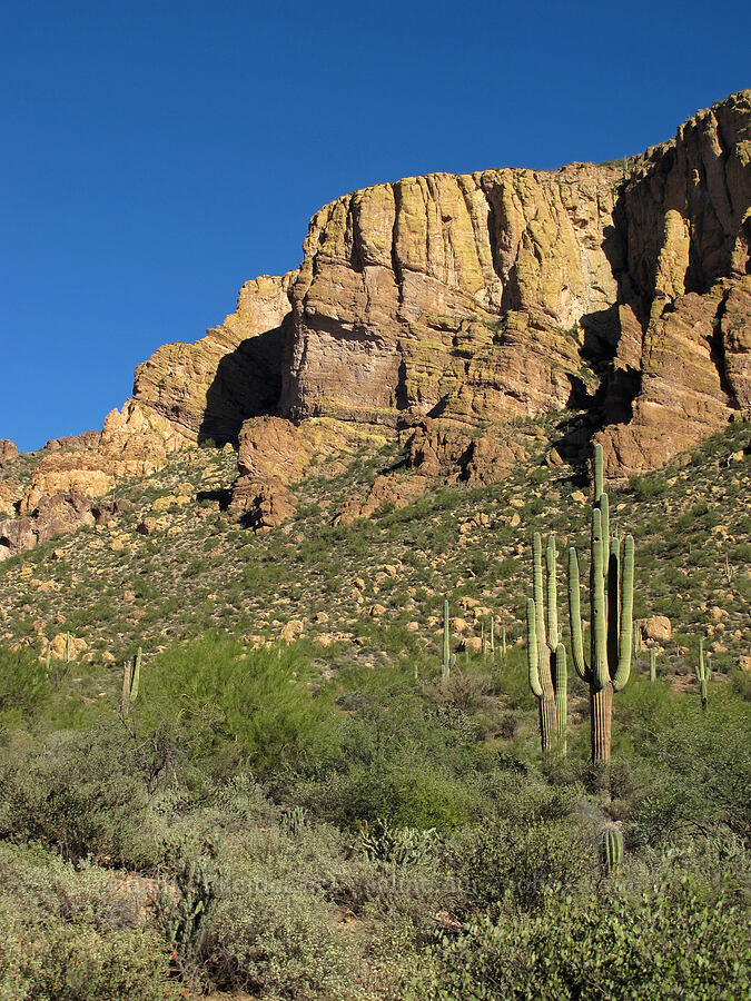 Geronimo Head [Boulder Canyon Trail, Superstition Wilderness, Arizona]