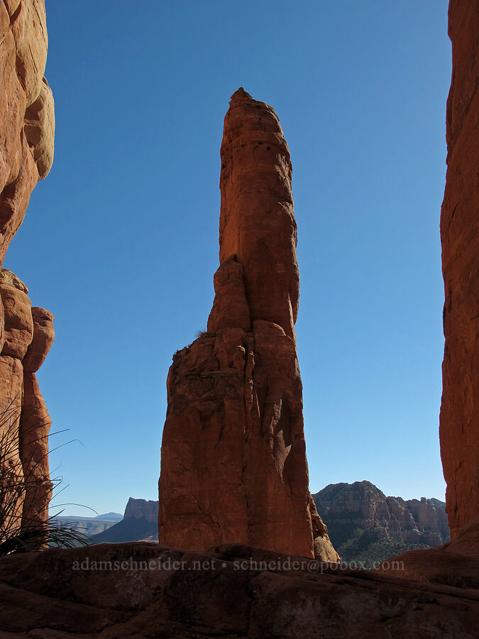 spires of Cathedral Rock [Cathedral Rock, Coconino National Forest, Arizona]