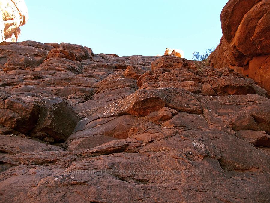 climbable cliff [Bell Rock, Munds Mountain Wilderness, Arizona]