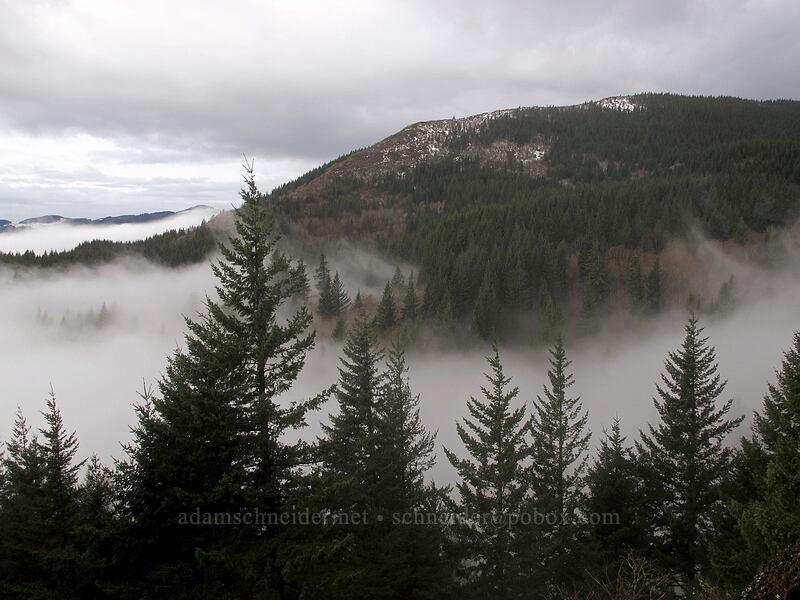 Hardy Ridge [Hamilton Mountain Trail, Beacon Rock State Park, Washington]