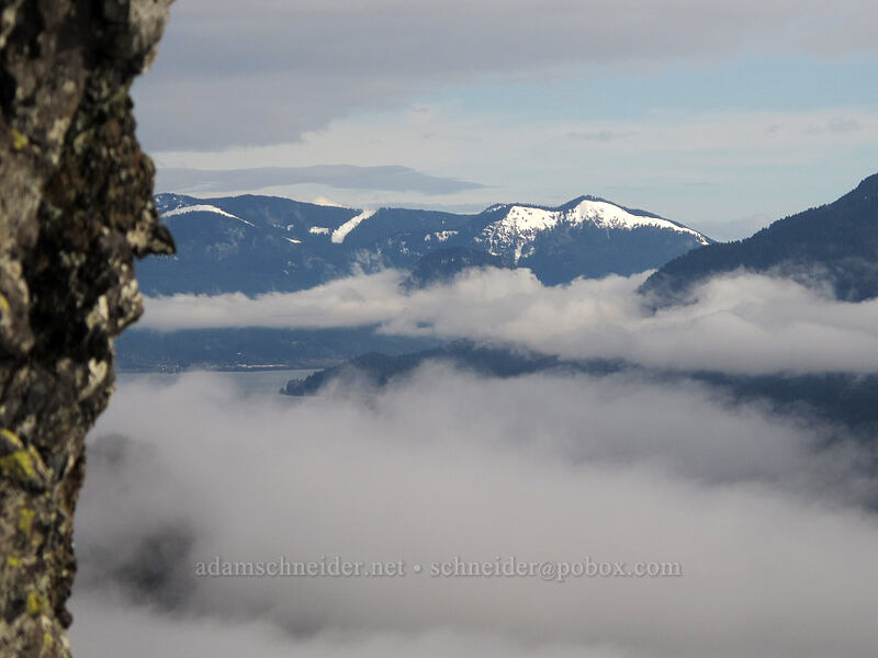 Dog Mountain [Hamilton Mountain Trail, Beacon Rock State Park, Washington]