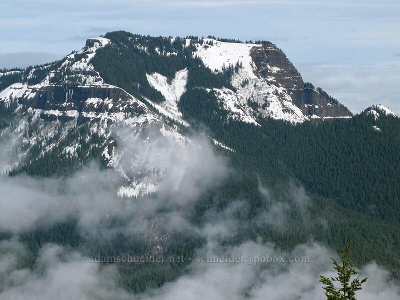 Table Mountain [Hamilton Mountain Trail, Beacon Rock State Park, Washington]
