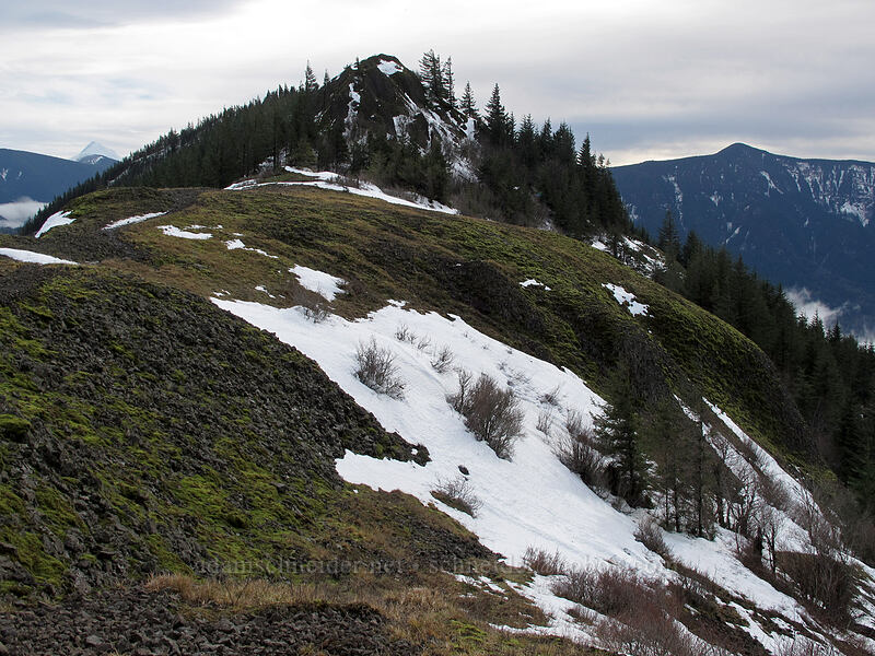 Hamilton Mountain from the north [Hamilton Mountain Trail, Beacon Rock State Park, Washington]