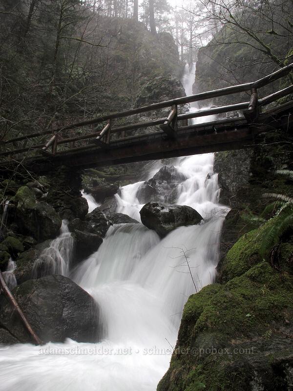 Rodney Falls & bridge [Hamilton Mountain Trail, Beacon Rock State Park, Washington]