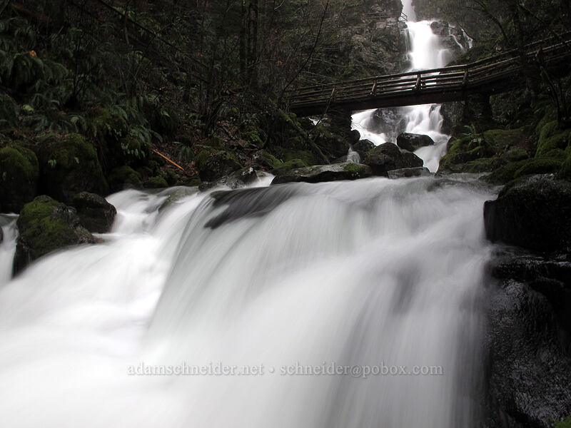 Rodney Falls & bridge [Hamilton Mountain Trail, Beacon Rock State Park, Washington]