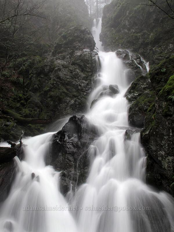 Rodney Falls [Hamilton Mountain Trail, Beacon Rock State Park, Washington]