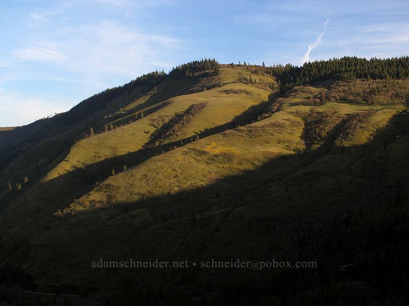 evening light in Rowena Gap [Rowena Crest, Wasco County, Oregon]