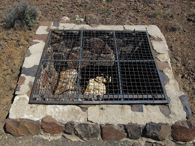petrified tree in a cage [Ginkgo Petrified Forest State Park, Kittitas County, Washington]