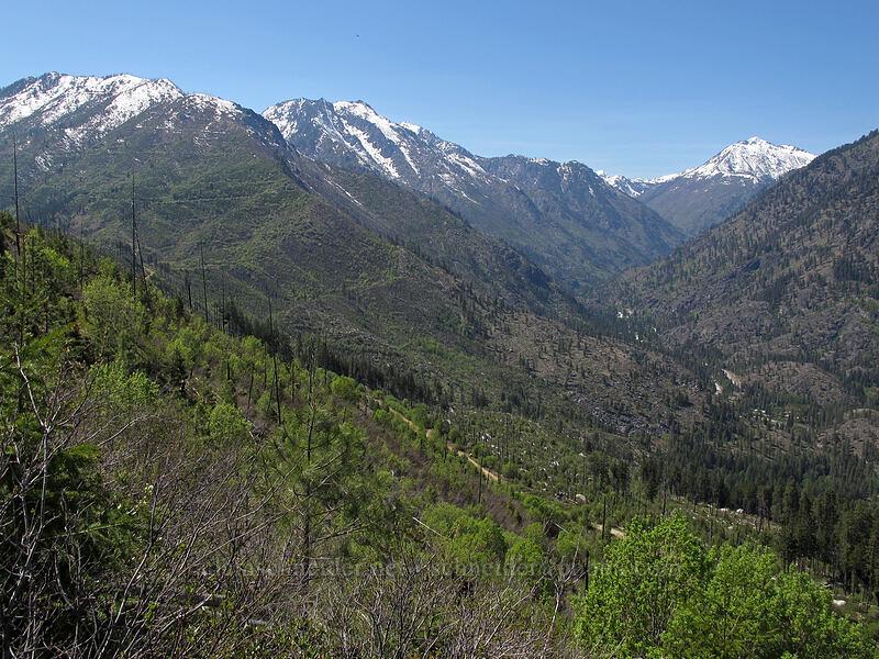 Wedge Mountain, the Enchantments, & Cashmere Mountain [Rat Creek Ridge Trail, Wenatchee National Forest, Washington]