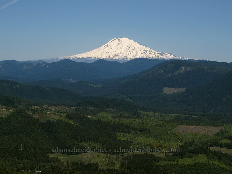 Mt. Adams [Cook Hill, Skamania County, Washington]