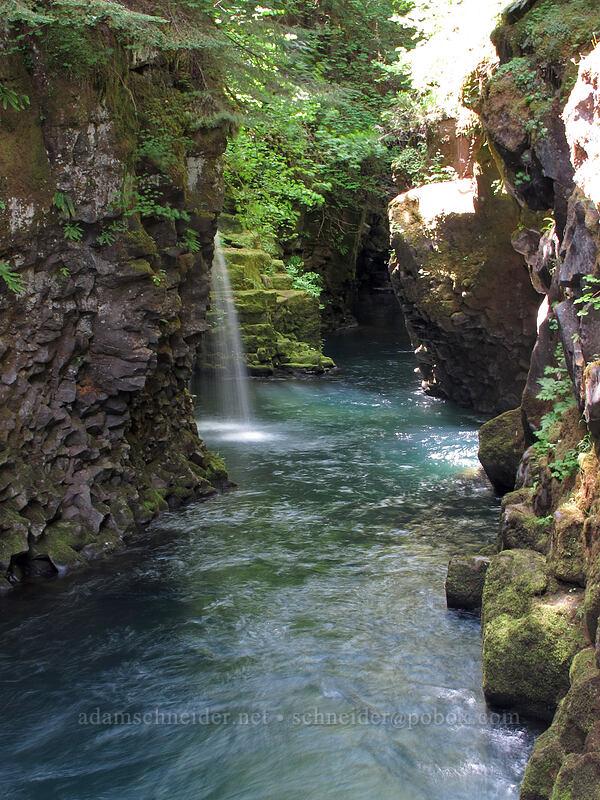 slot canyon [Toketee Falls Trail, Umpqua National Forest, Oregon]