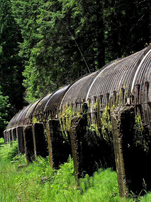 leaky wooden penstock [Toketee Falls Trailhead, Umpqua National Forest, Oregon]