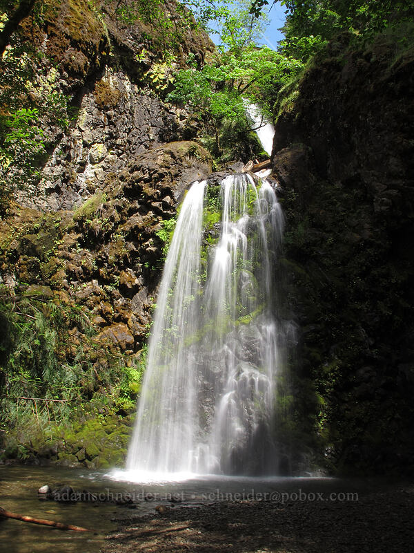 Fall Creek Falls [Fall Creek Falls Trail, Umpqua National Forest, Oregon]