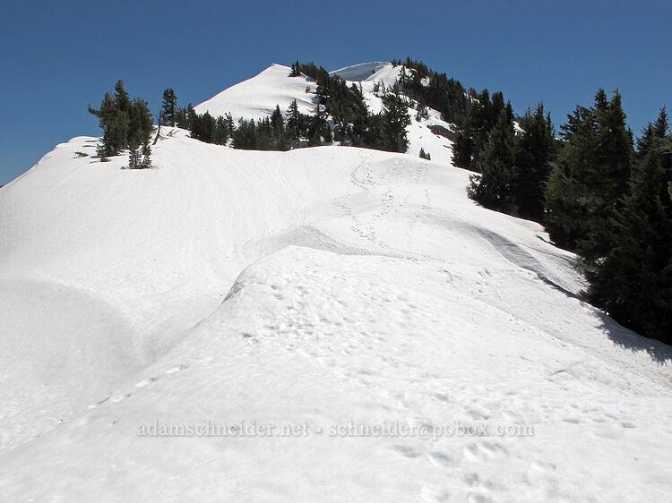Garfield Peak's summit [Garfield Peak Trail, Crater Lake National Park, Oregon]