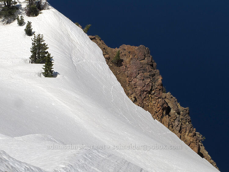 animal tracks in the snow [Garfield Peak Trail, Crater Lake National Park, Oregon]
