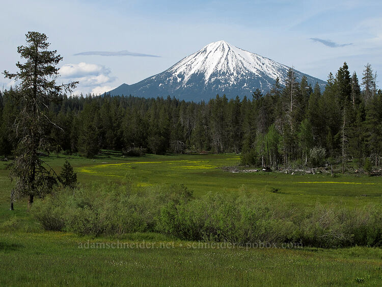 Mt. McLoughlin & Deadwood Prairie [Dead Indian Memorial Road, Rogue River-Siskiyou National Forest, Oregon]