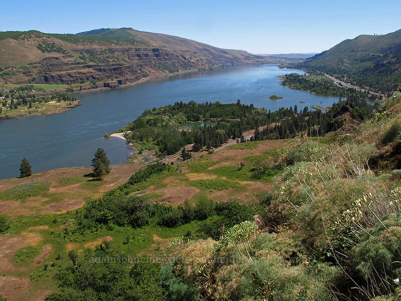 Columbia River [Rowena Plateau, Wasco County, Oregon]