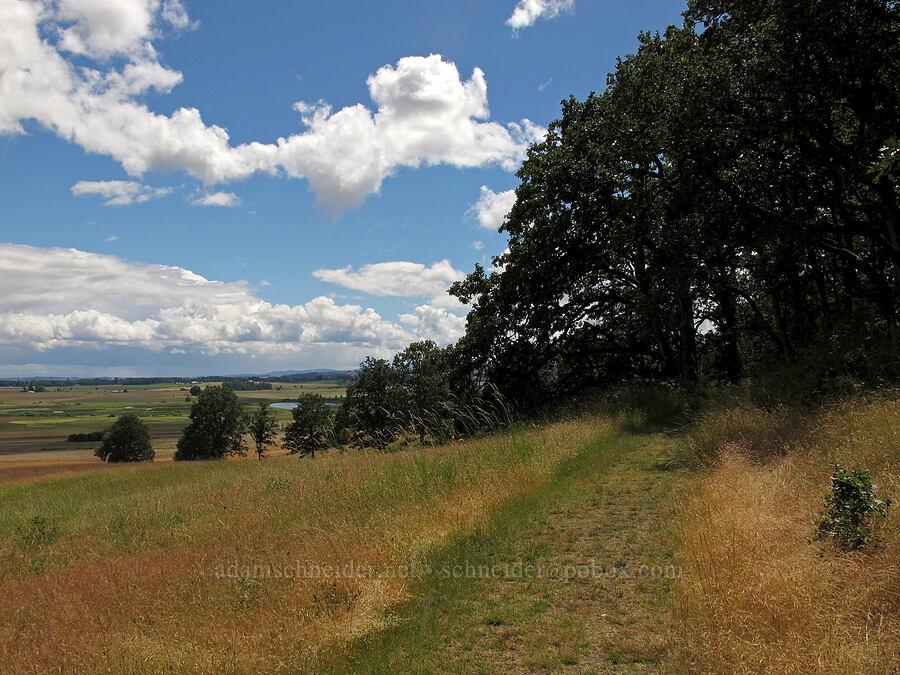 oak trees, grass, & clouds [Baskett Slough NWR, Polk County, Oregon]