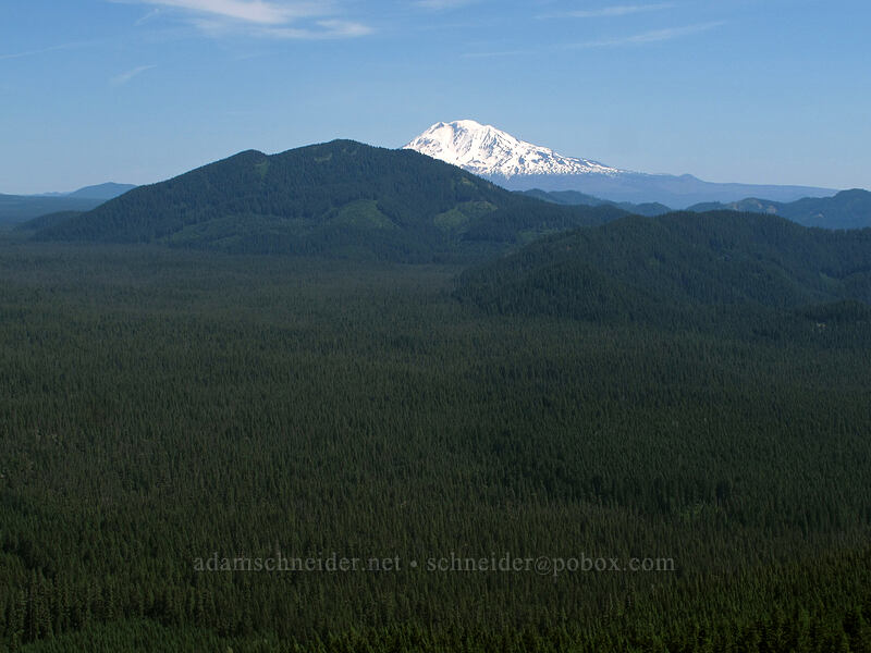 Little Huckleberry Mountain & Mt. Adams [Grassy Knoll Trail, Gifford Pinchot National Forest, Washington]