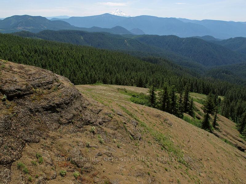 Grassy Knoll's south ridge & Mt. Hood [Grassy Knoll, Gifford Pinchot National Forest, Washington]