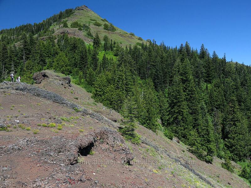 Cone Peak [Cone Peak Trail, Willamette National Forest, Oregon]