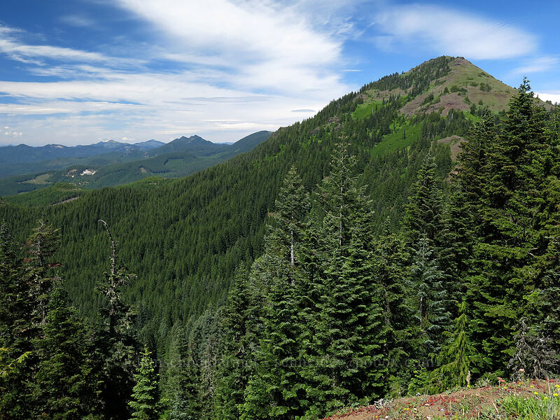 Cone Peak & the Cascades [Cone Peak Trail, Willamette National Forest, Oregon]