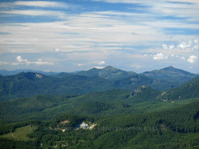 Mt. Hood, Coffin Mountain, & Bachelor Mountain [Iron Mountain summit, Willamette National Forest, Oregon]