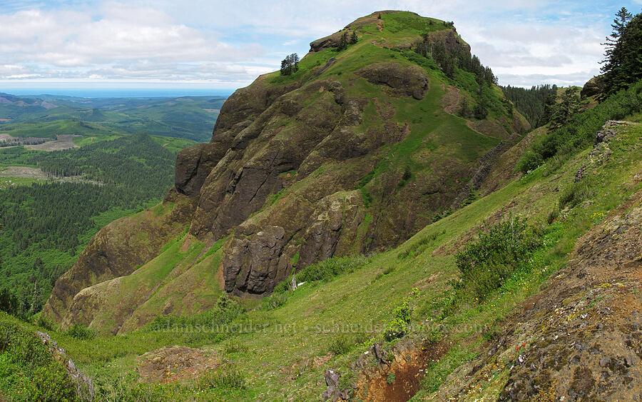 Saddle Mountain panorama [Saddle Mountain Trail, Clatsop County, Oregon]