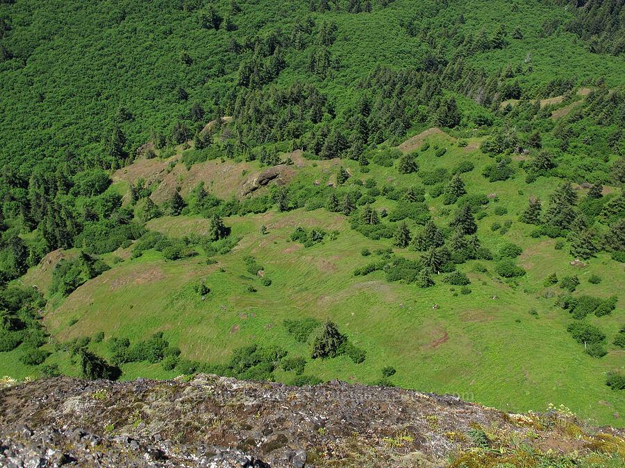 meadows far below the summit [Saddle Mountain summit, Clatsop County, Oregon]