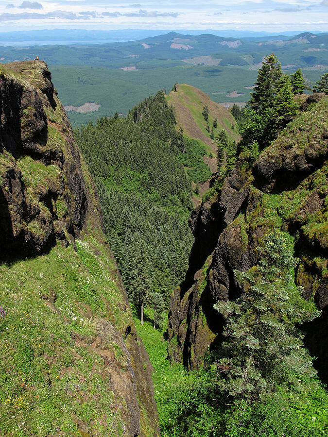 steep cliffs [Saddle Mountain Trail, Clatsop County, Oregon]