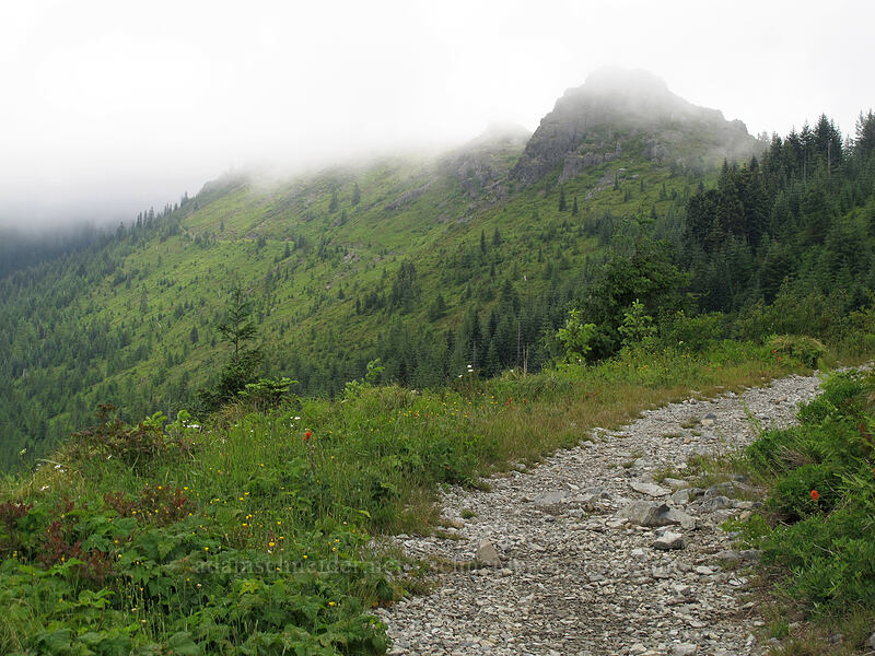 Pyramid Rock in the clouds [Grouse Vista Trail, Gifford Pinchot National Forest, Washington]