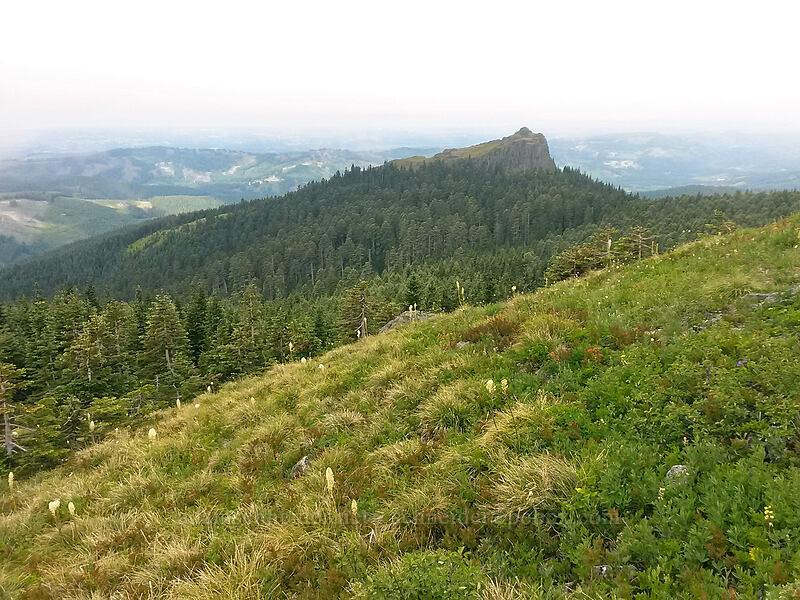 Sturgeon Rock [Silver Star Mountain summit, Gifford Pinchot National Forest, Washington]