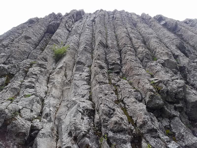 columnar basalt on Sturgeon Rock [Sturgeon Rock, Gifford Pinchot National Forest, Washington]