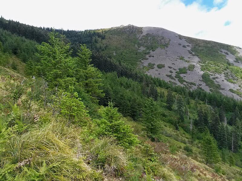 Indian Pits ridge [near Pyramid Rock, Gifford Pinchot National Forest, Washington]